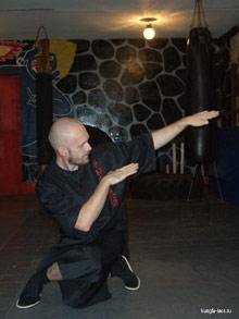 Обучение Кунг-фу: стиль Кобра