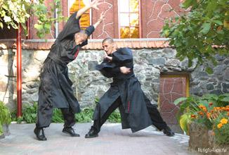 Обучение Кунг-фу: стиль Черный Кот
